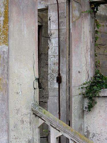 Alcatraz | by ladybugbkt