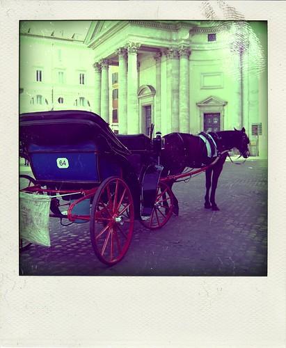 Cavalli del secolo scorso, non in polaroid!