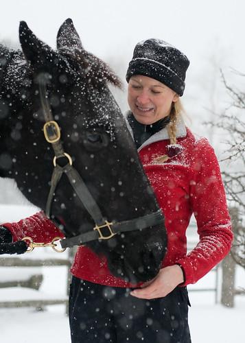 winter red horse snow friend palm jessana