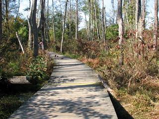 The Boardwalk Haw River Open House 7956