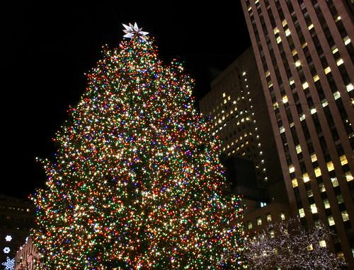 Rockefeller Center Christmas Tree in New York City by caruba