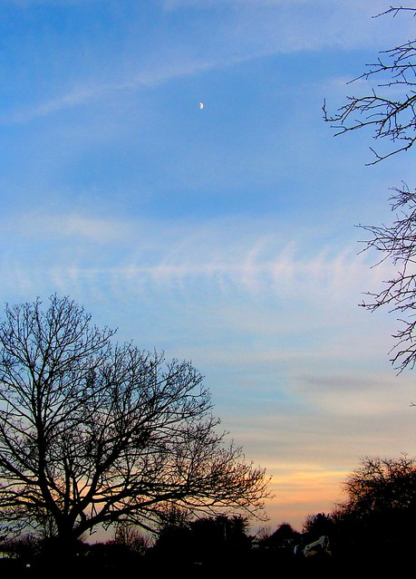 New England  Winter Moon