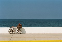 Bicycle | by pacomexico