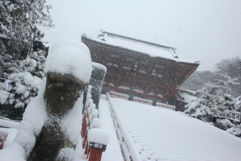 雪の鎌倉_20