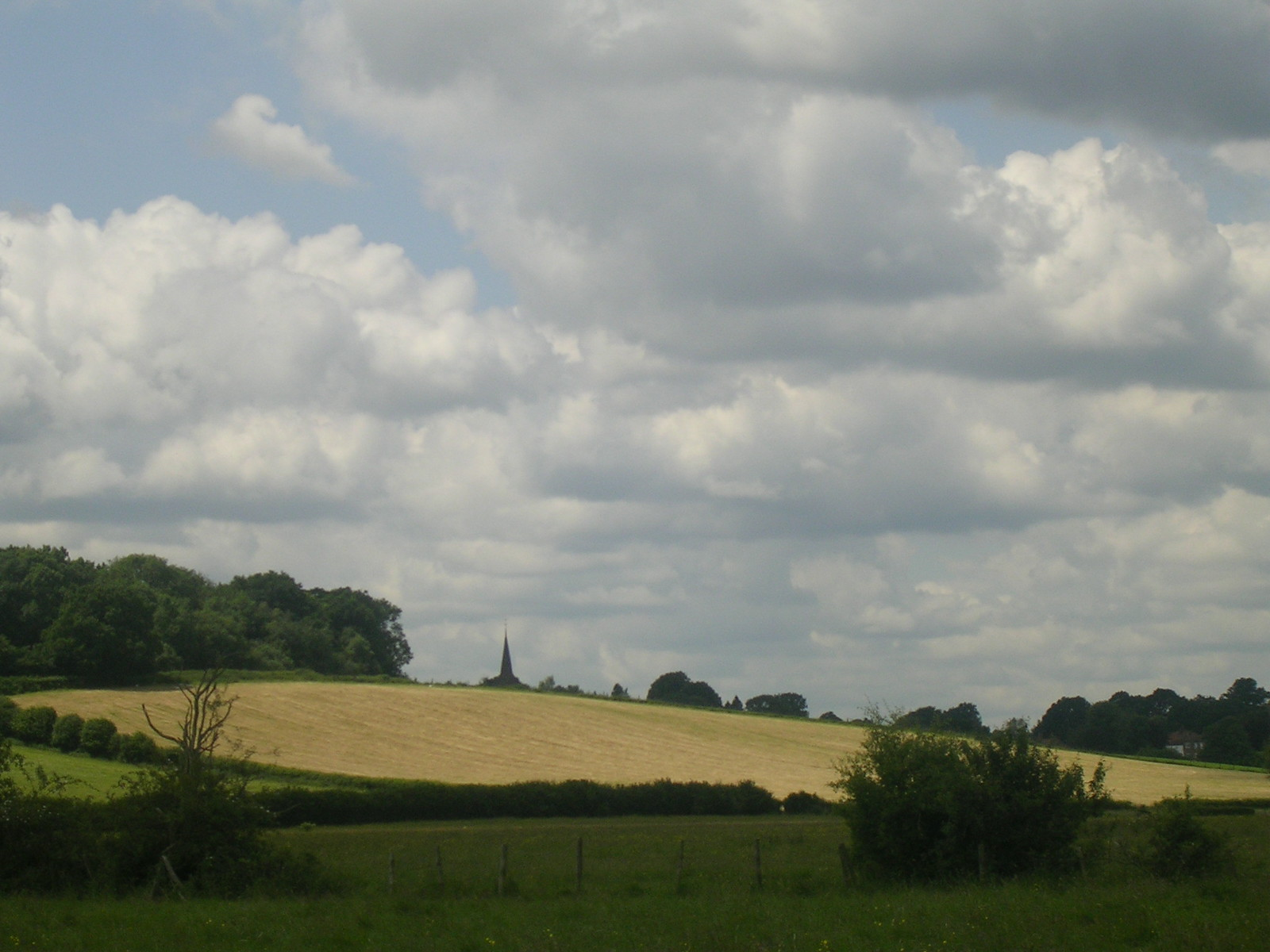 View Ashurst to Hartfield