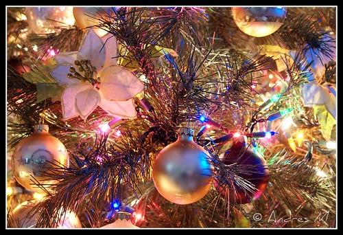Feliz Navidad 2008 les desea EDY