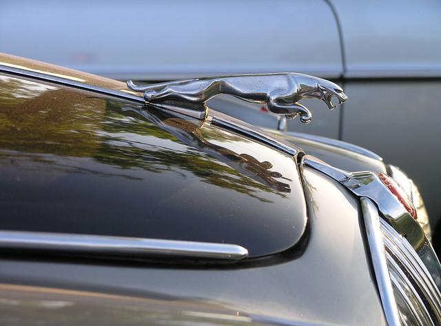 The Jaguar symbol
