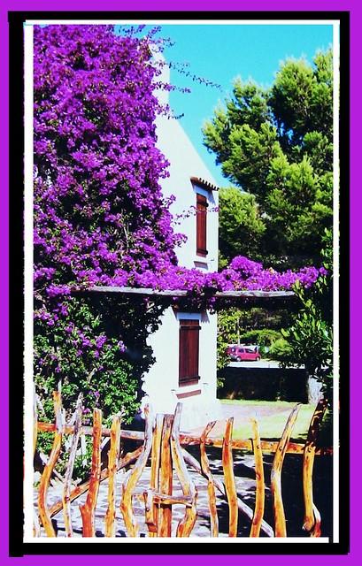 Sardinien - Hübscher Garten mit Bougainvillea