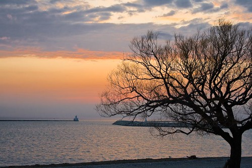 sunset summer lake tree beach water silhouette sand scenery huron goderich omot