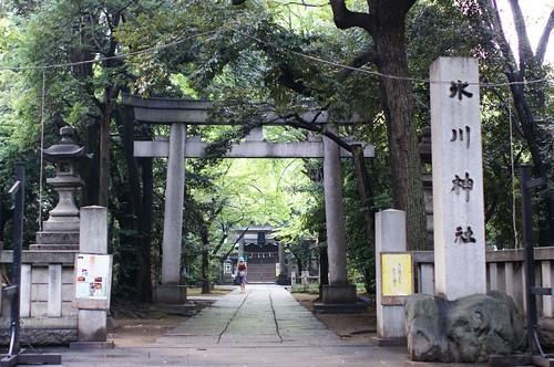 hikawa-shrine | by kobakou