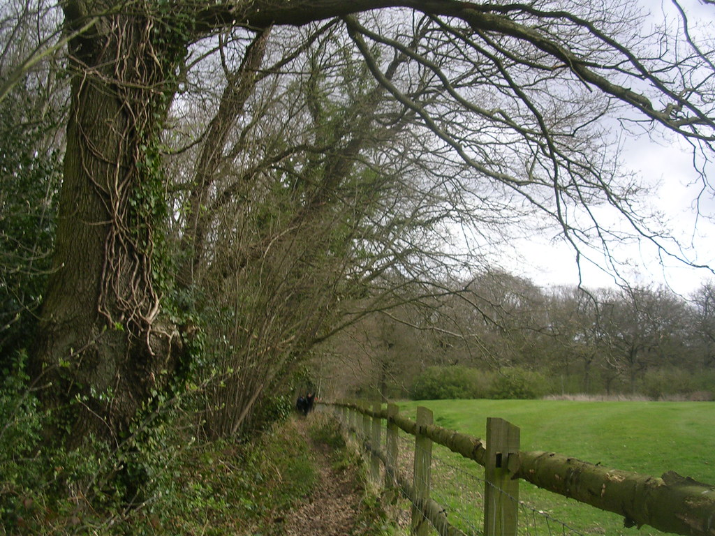 path Upper Warlingham to Hayes