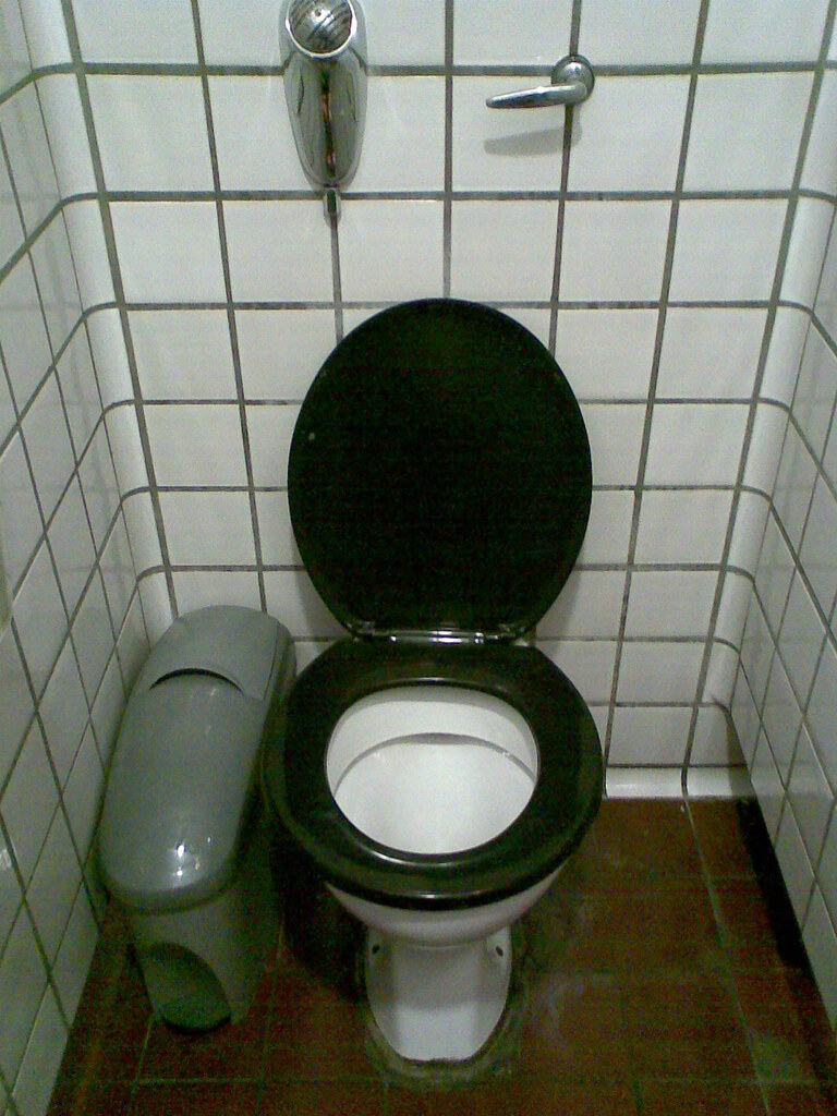 Admirable Ladies Toilet Queen Elizabeth Hall Amazing Tiling Jo Gmtry Best Dining Table And Chair Ideas Images Gmtryco