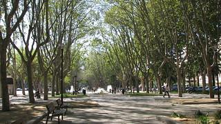 Perpignan | by bortescristian