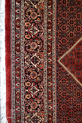 Persian Rug Bidjar 8x11-9x12 | by www.tableaurug.com