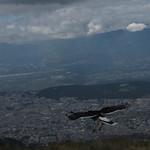Di, 09.06.15 - 13:06 - Rucu Pichincha, Quito
