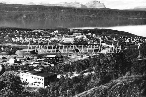 Narvik (1393)