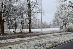 winter-2017-1