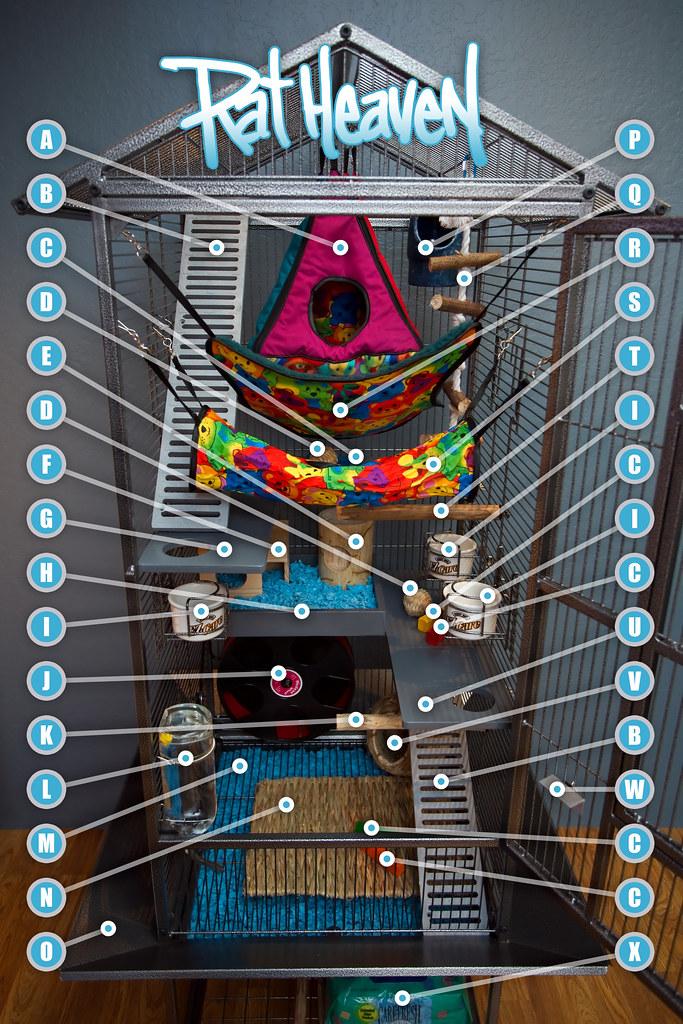 Rat Heaven 8587 - Diagram