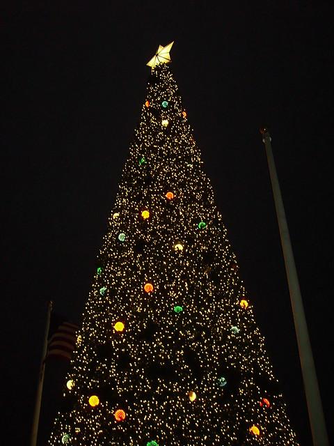 Contemporary Christmas Tree.Contemporary Christmas Tree Disney S Contemporary Resort
