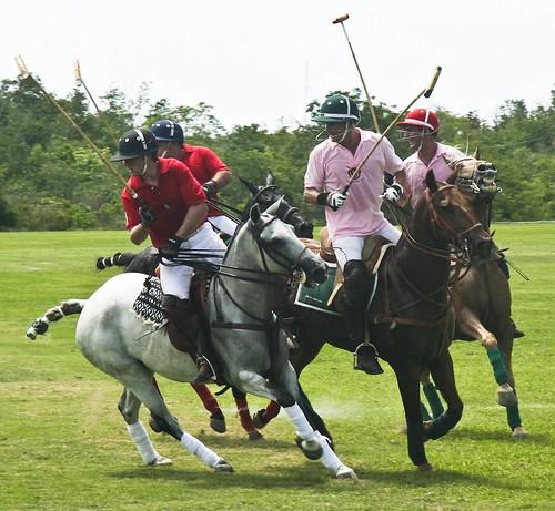 Andalucia Polo Club Match