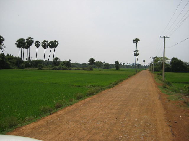 Way to the temple