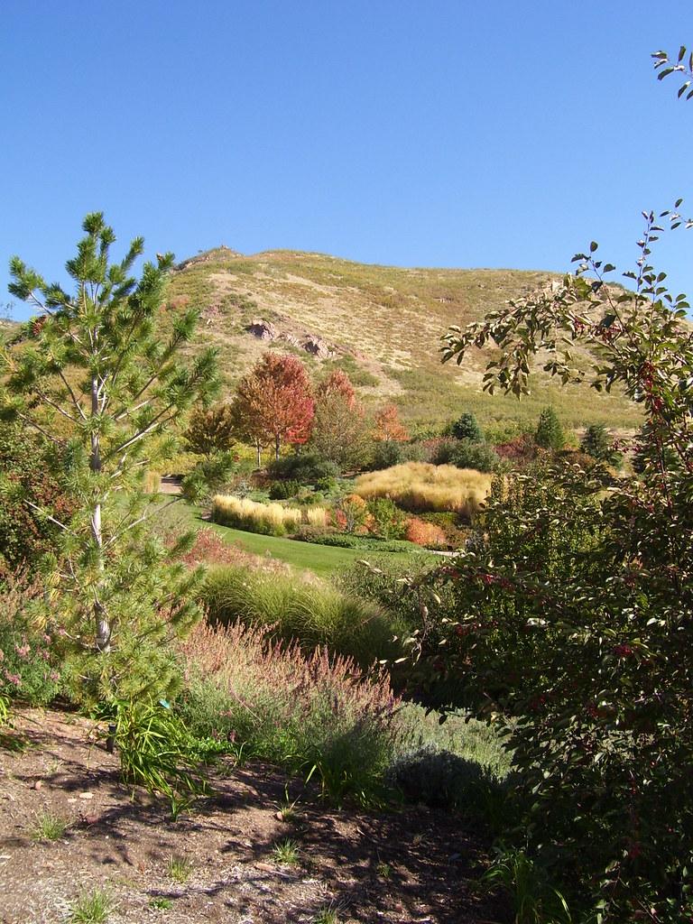 Red Butte Garden Arboretum Jenny Organa Flickr