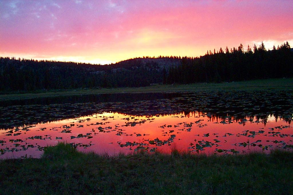 Lilypad Lake 2