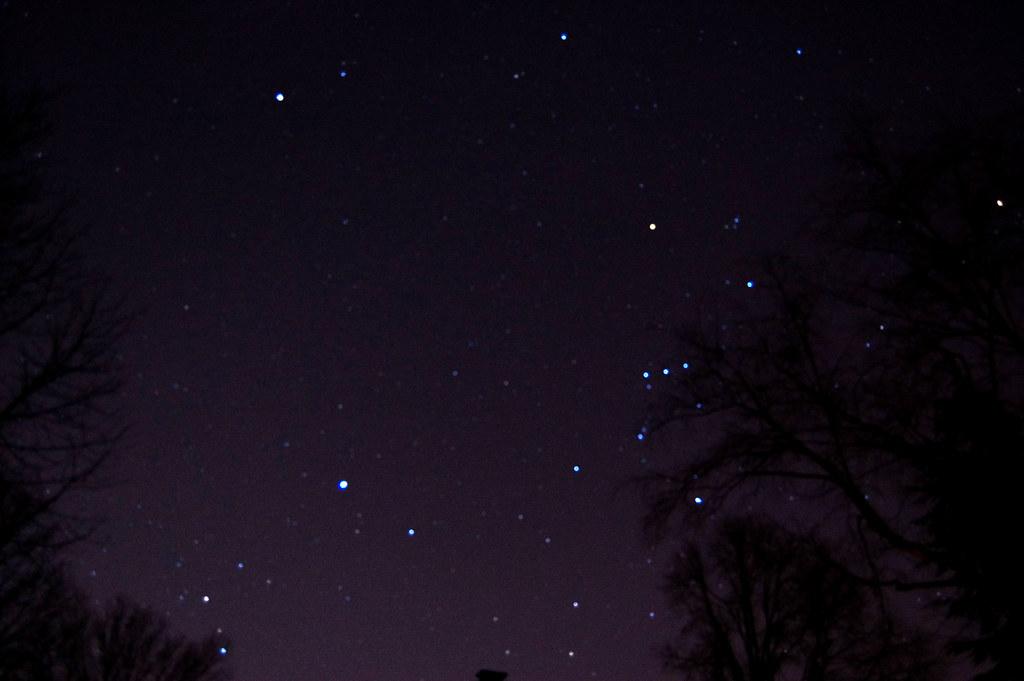 ... night sky looking towards Orion - by kronerda