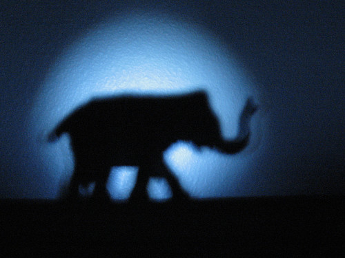 3.08 045.Shadow of the elephant