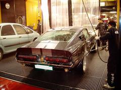 Lavado a mano, Mustang