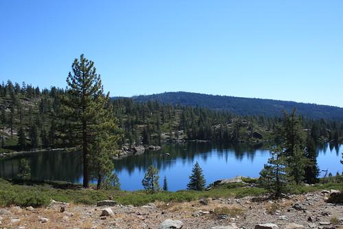 reflection tree pine salmonlake lakesbasinrecreationarea
