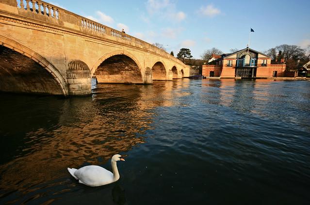 Golden hour at Henley-on-Thames
