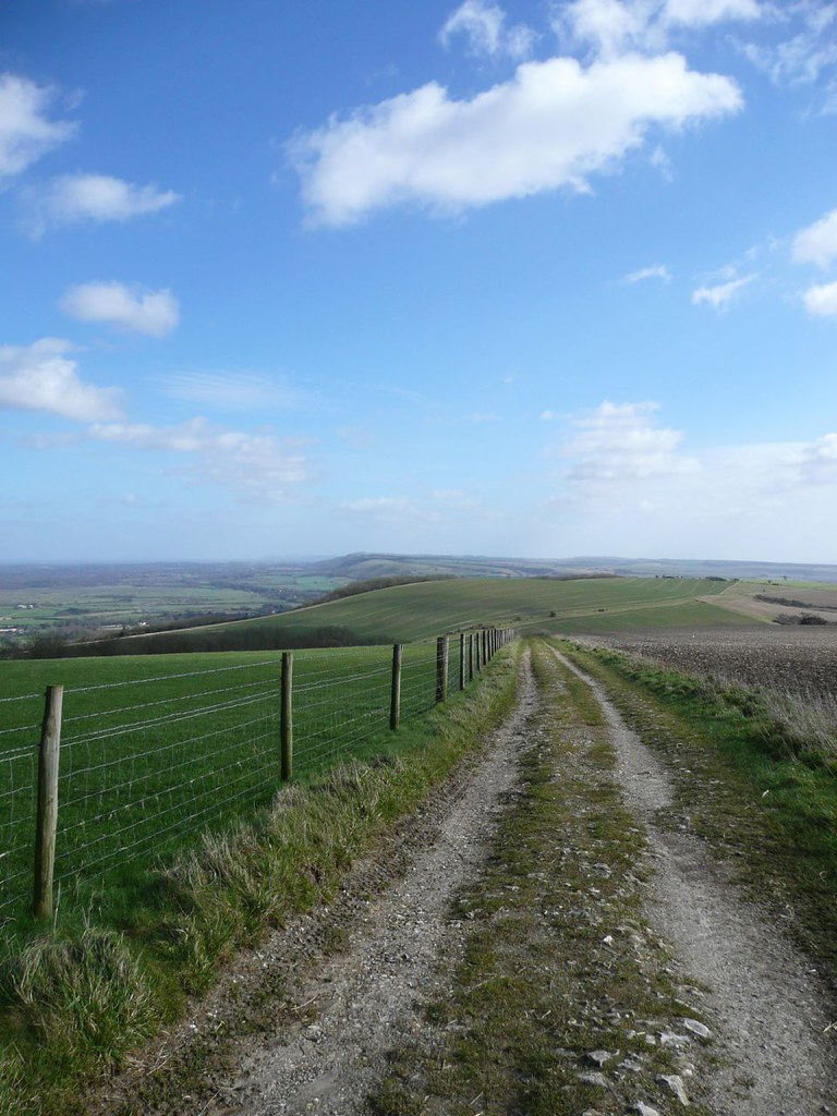 Amberley to Pulborough The South Downs Way, looking east from Toby's Stone, 1 March '08.