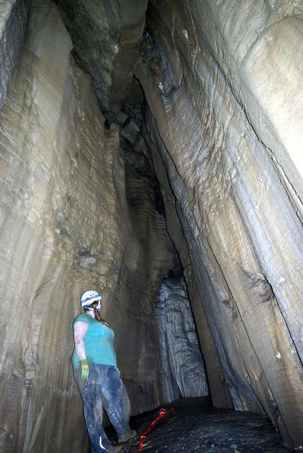 Alexis, BBC Cave, White Co, TN