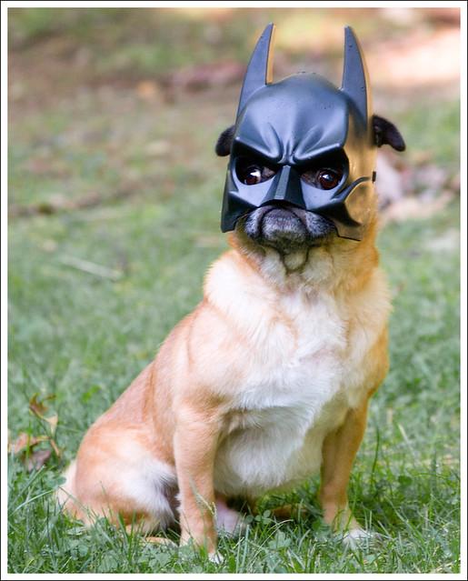 No, Really... I Am Batman