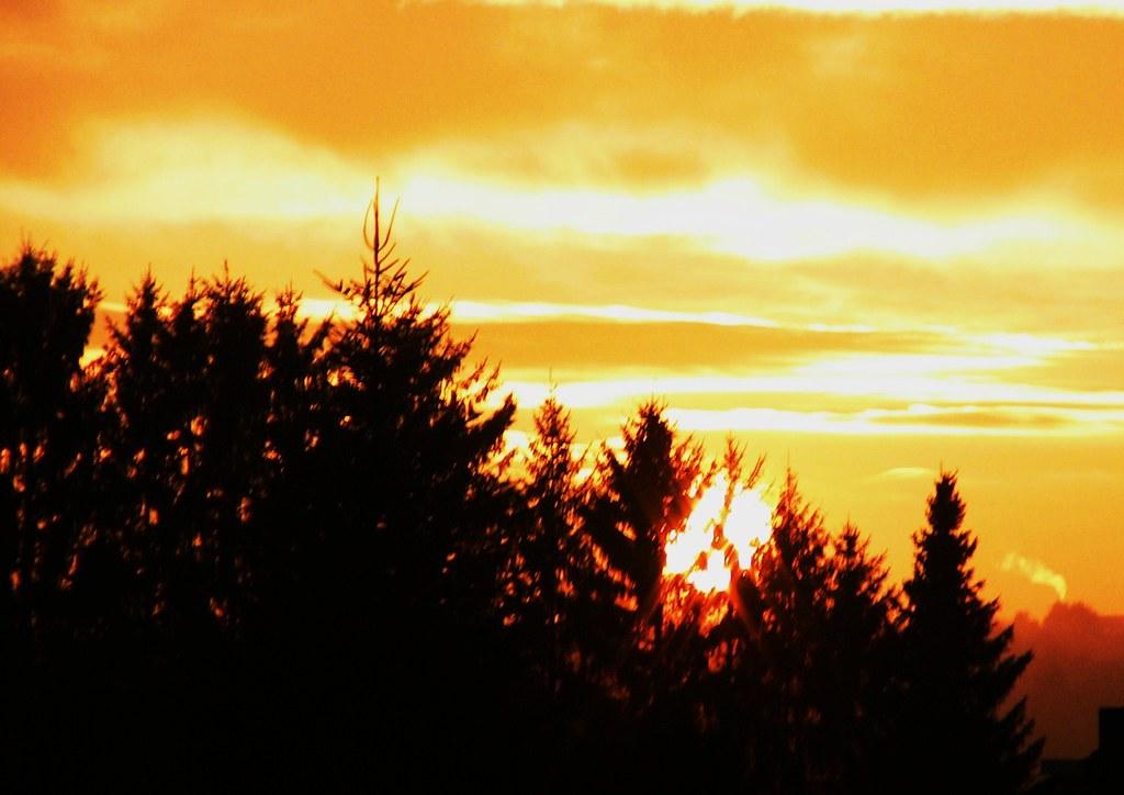 Sonnenuntergang am Albrand - 1/12345