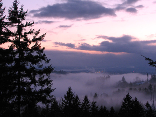 sunset fog forest woodland river washington foggy lewis valley wa lewisriver canons3