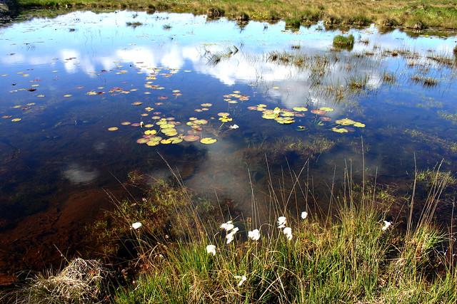 Lake reflections, Bog Road near Clifden, Connemara
