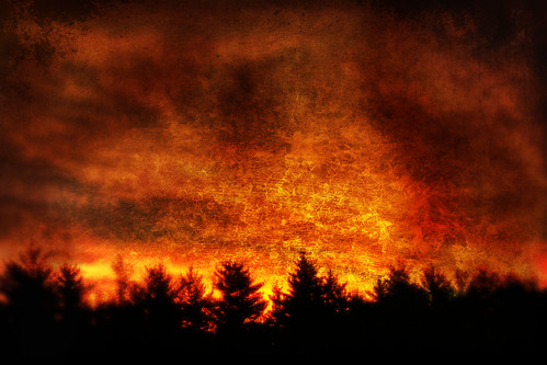 trees orange texture night forest painting landscape fire sadness digitalpainting inferno
