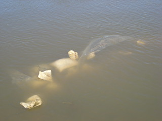 Submerged Sandbags | by Josh Cramer