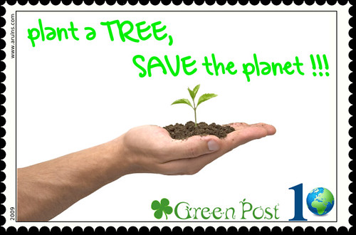Plant a Tree, Save the Planet | Save Earth, Plant a Tree    … | Flickr