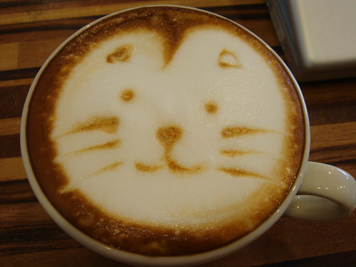 cat face on cappuccino | by gugod