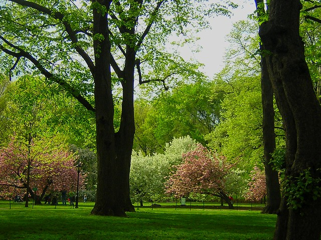 May 3rd, Central Park