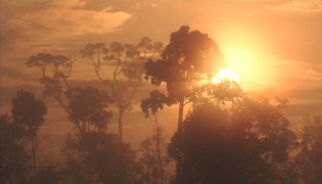 Borneo Sunrise #4