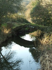 Clyne Valley river bridge