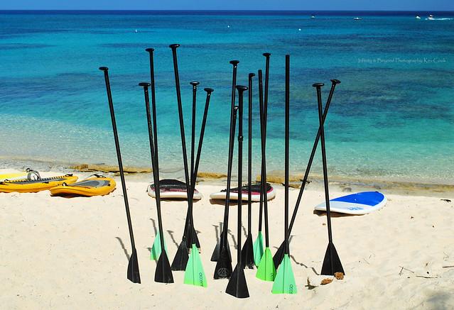 Paddleboard Paddles