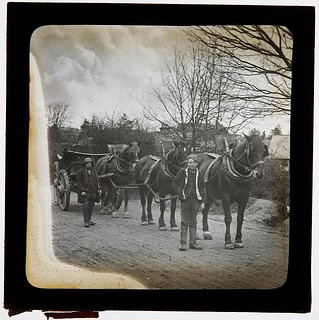 Heavy horses and cart, probably Ireland | by whatsthatpicture