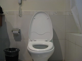 Disapproving Toilet | by brownpau