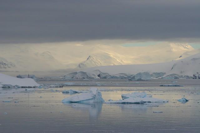 Morning Light - Paradise Harbour - Antarctica
