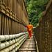 Footbridge over Nam Khan river